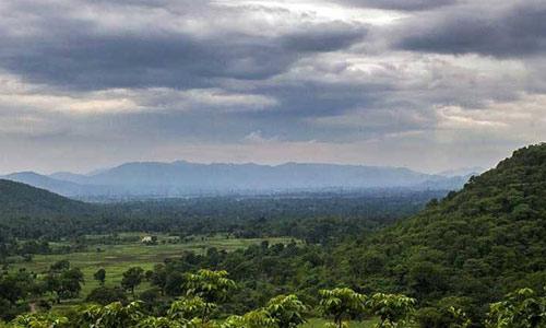 dalma-hills